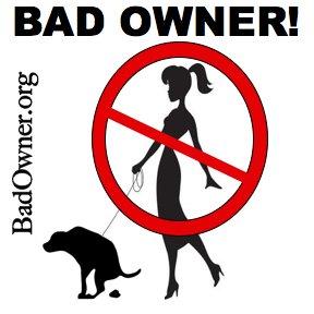 BadOwner Logo